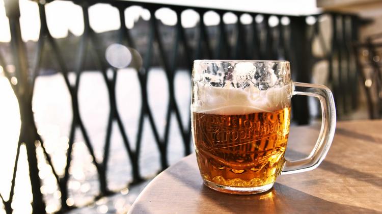 Cerveja IPA: o que será que combina?
